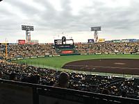 阪神タイガース ウル虎の夏2016