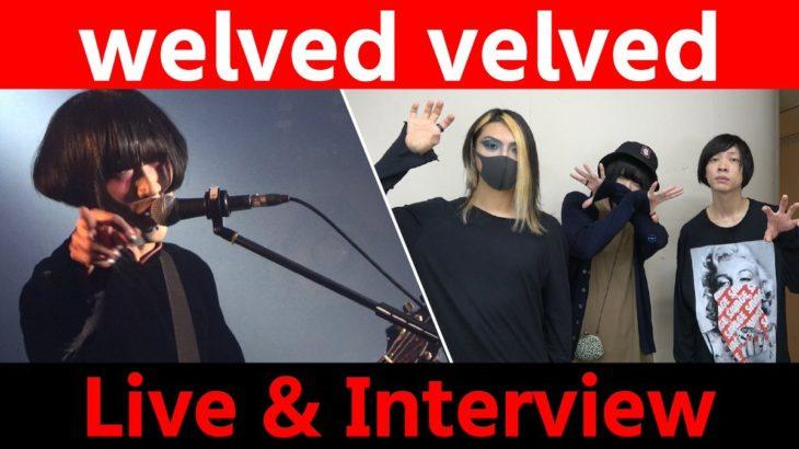 【welved velved】ライブ&トーク!<1日1組ライブハウスで今注目のアーティスト紹介番組「MUSIC×HUNTER 365」>